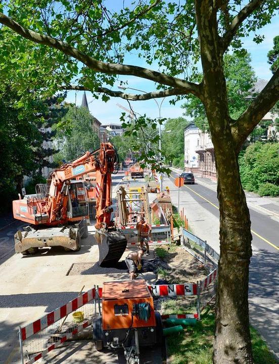 Die Vorarbeiten für die Tramtrasse dur...die Baustelle auf der Werthmannstraße.  | Foto: Ingo Schneider