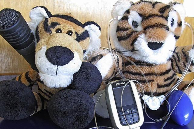 Zwei Tiger in der Schule