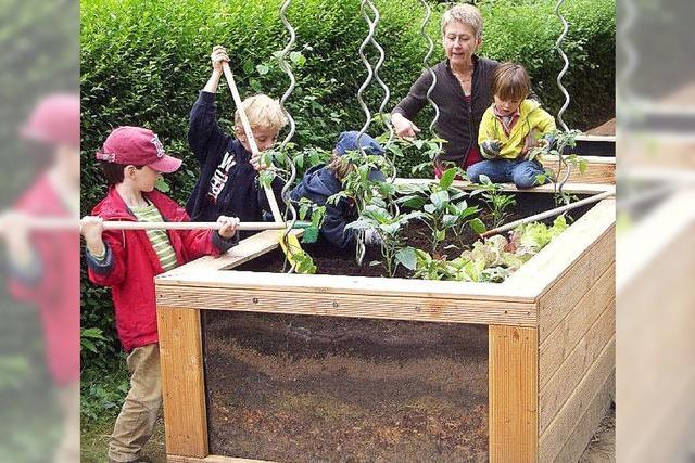 Montessori-Zentrum plant Umzug in einen Neubau in Albersbösch