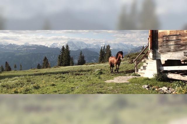 Kurz vor der Schweizer Grenze um sieben Kilo Ballast leichter