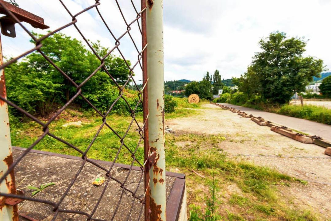 Eisenbahnschwellen wurden ausgelegt, u...der Fläche erneut geparkt werden kann.  | Foto: Oliver Huber