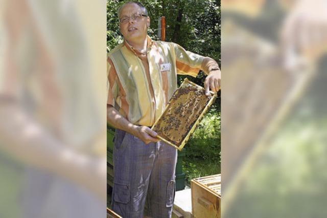 Rund 350 Gäste umschwirren den Bienenstand