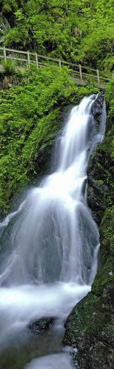 Imposanter Wasserfall in der Lotenbach...ner Nebenschlucht der Wutachschlucht.     Foto: Thines