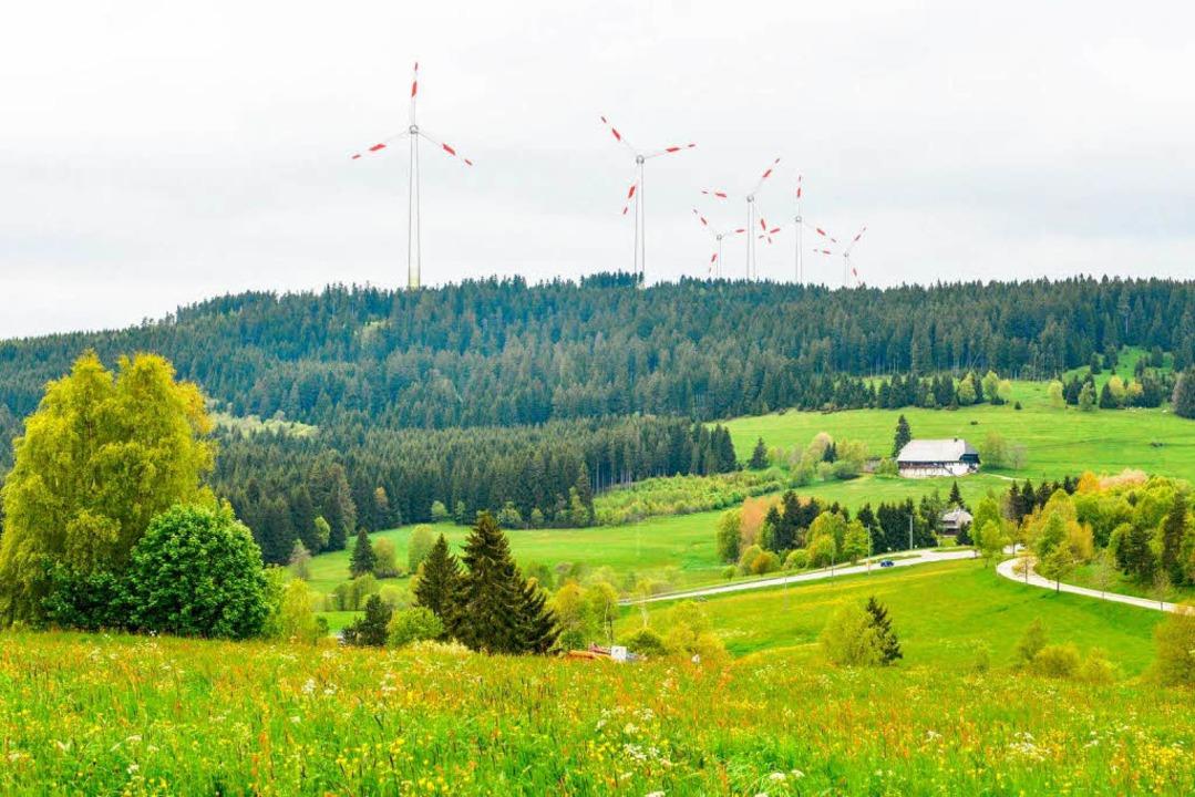 Diesen Anblick könnten die Gäste im  H...s Fischbacher Tal zum Ahaberg schauen.  | Foto: Michael Glaser