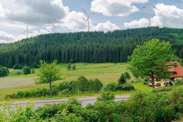 Gemeinderat stimmt gegen Windkraft am Schluchsee
