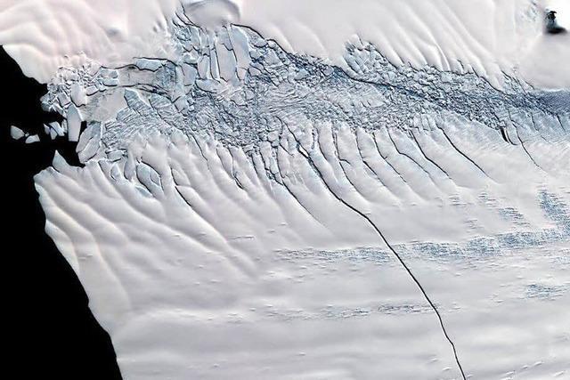 720 Quadratkilometer großer Eisberg hat sich gelöst