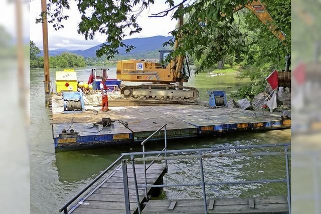 Rheinseitenarm soll wieder fließen