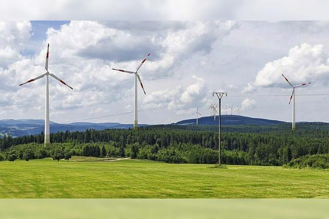 Windkraftflächen auf dem Prüfstand