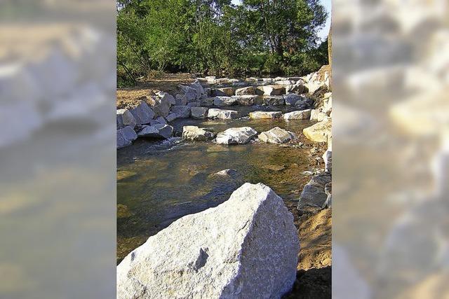 Klettersteine für Fische