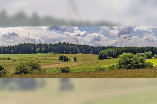 Keine Windkraft im Oberholz