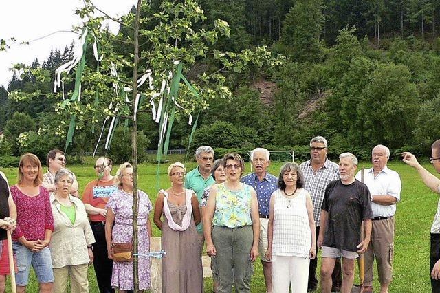 Linde in Langenau gepflanzt