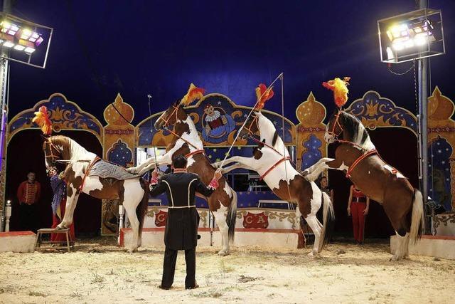 Circus Alberti in Lahr
