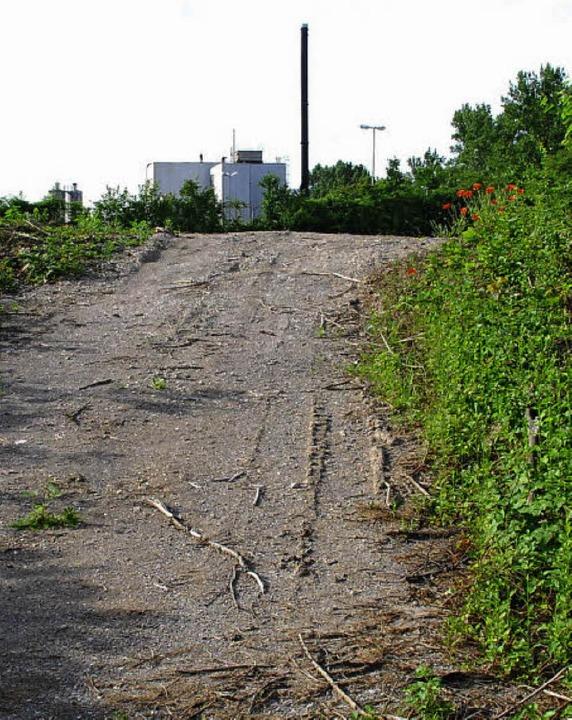 Welcher Weg ist der richtige zur Sanei... Hintergrund) will eine Einkapselung.   | Foto: Ralf Staub