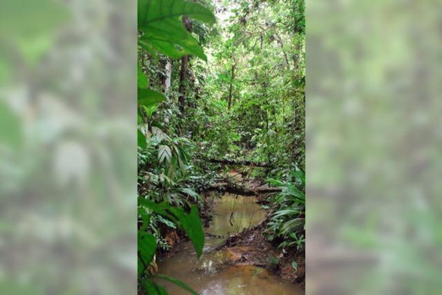 Nicaragua setzt auf lokale Tourismusangebote