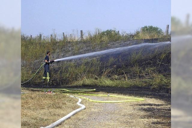 Die Waldbrandgefahr steigt akut