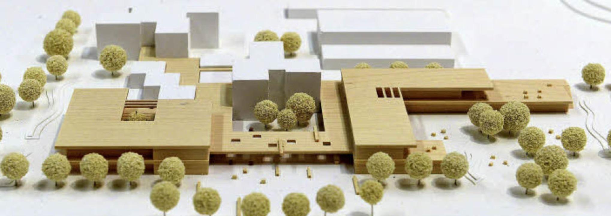 Das Modell zeigt die geplanten Erweite...d (weiß) die bisherigen Schulgebäude.   | Foto: Ingo Schneider