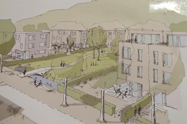 Lörrach-Haagen: Freiburger Architekten planen Neubaugebiet
