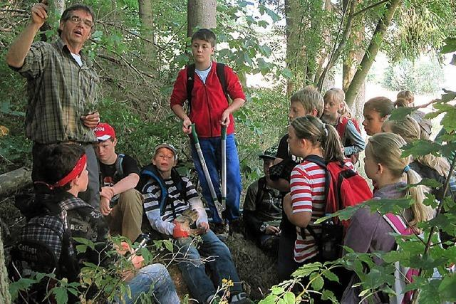 Schüler leisten Beitrag zum Waldumbau