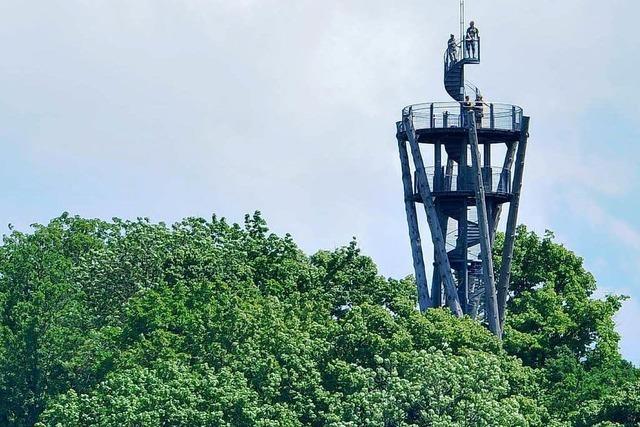 Pilzbefall – Stadt schließt den Schlossbergturm