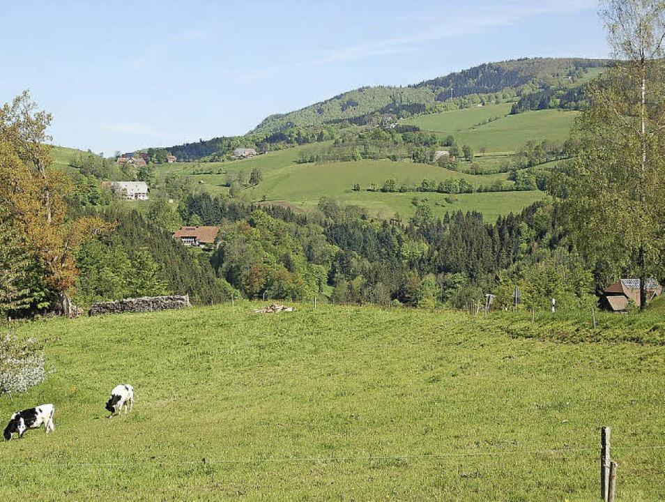 Einen schönen Anblick bietet der Kande...n, ist von Waldkirch aus eher mühsam.   | Foto: Ringwald