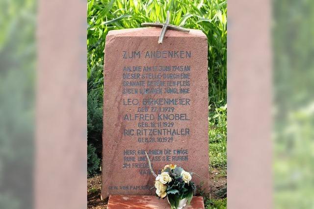 Vandalismus: Unbekannte beschädigen Gedenkstein in Hartheim