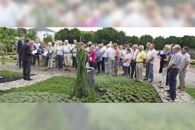 Gräberfeld als Antwort auf Friedwälder