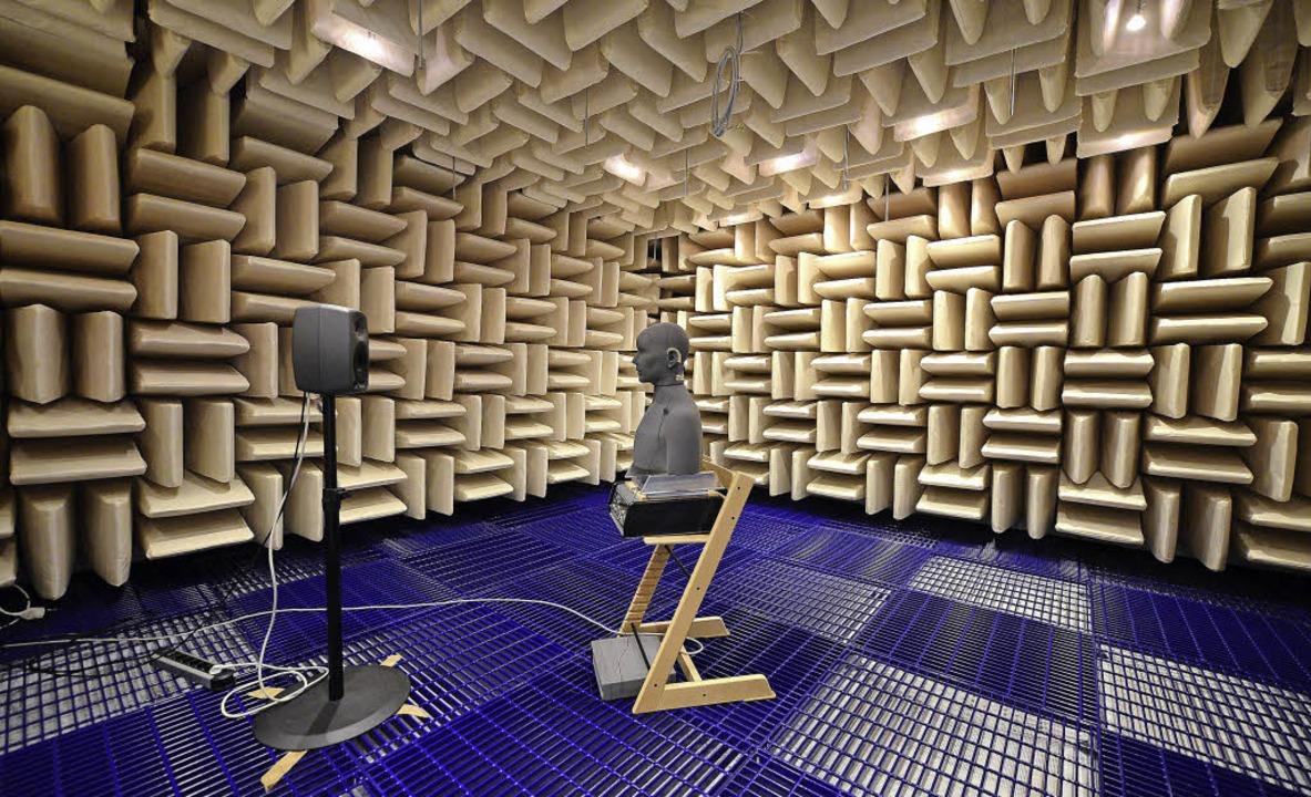 Der Raum ohne Schall – neu im IC...ür Messungen in Simulationen genutzt.   | Foto: Ingo Schneider