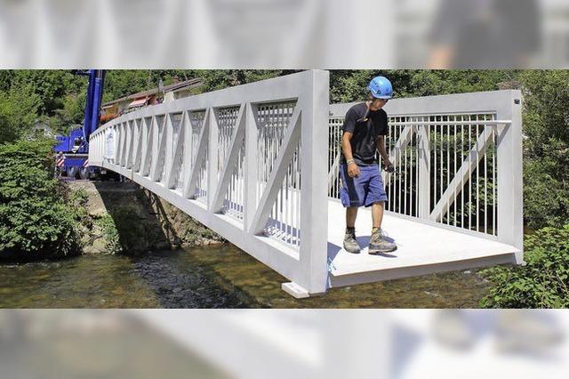 Brückenschlag über die Wiese