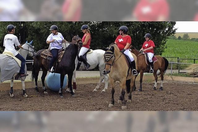 In Weizen werden am Wochenende Pferde Fußball spielen