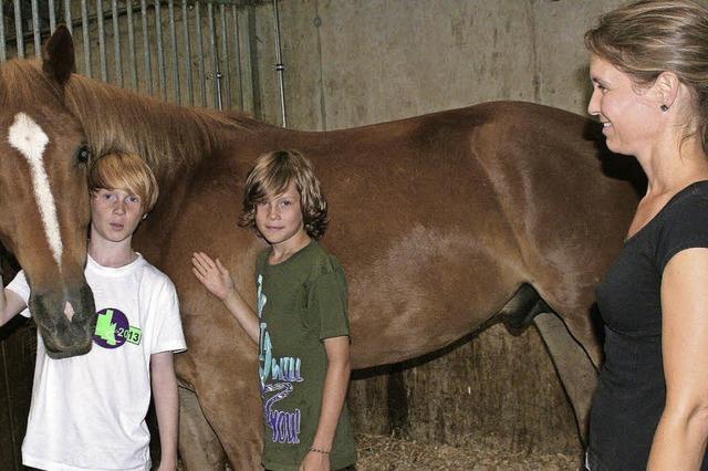 Wo Pferdefreunde nach einem langen Tag Kraft tanken
