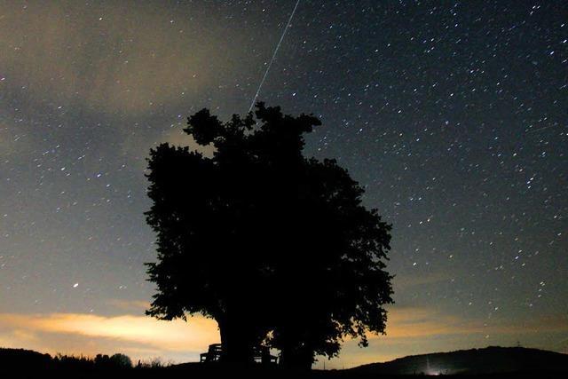 Sternschnuppen auf dem Feldbergturm beobachten