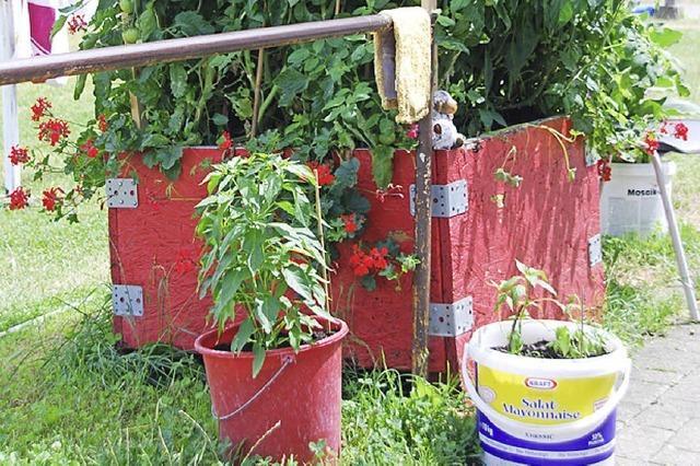 Rote Kisten tragen viele Früchte