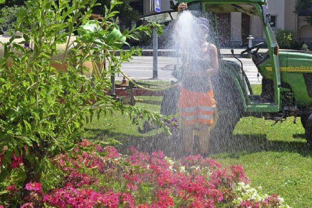 Stadtgärtner bringen den Regen
