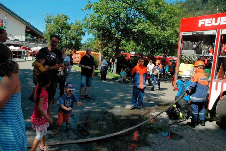 Eindrücke vom Sommerfest der Todtmooser Feuerwehr (Foto: Christiane Sahli)