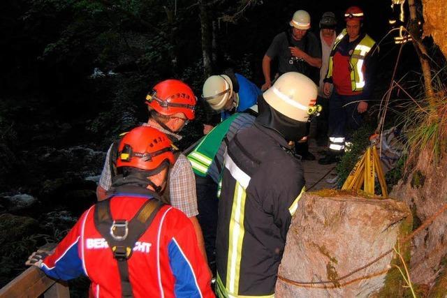 Pferd bricht in Brücke ein – Rettungsversuche misslingen