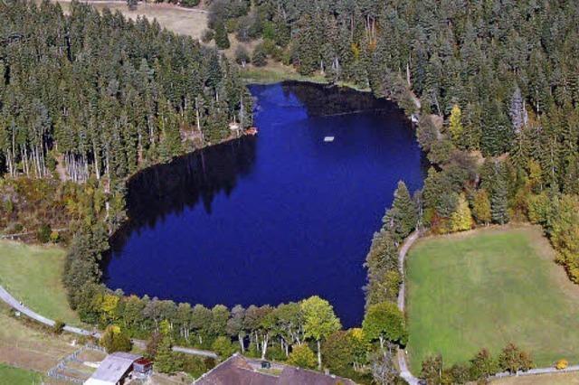 Seen und Naturbäder im Schwarzwald und in den Rheinauen
