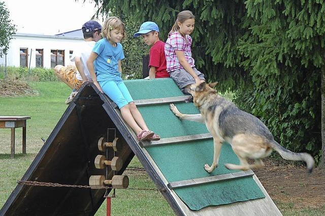 Hunde stehen bei Kindern hoch im Kurs