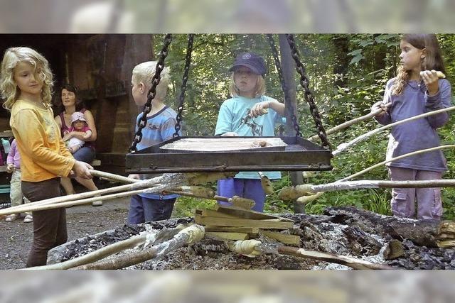 Kleine Strolche im Wald