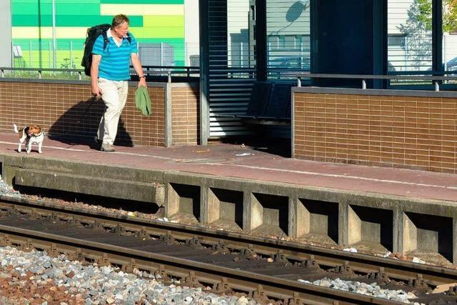Zugausfälle verärgern Bahnkunden auf der Hochrheinschiene