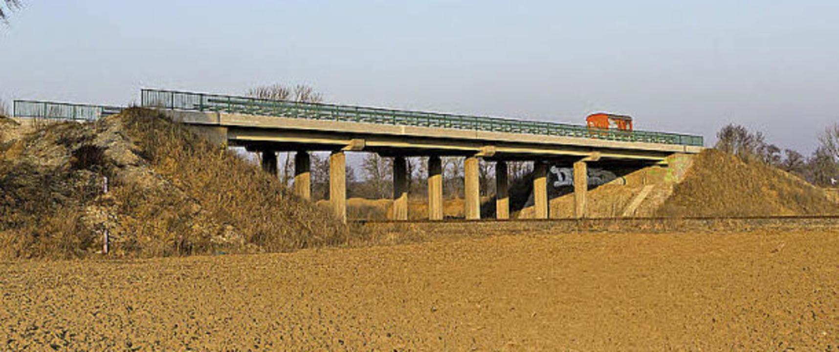 Auch über diese  Brücke bei Gottenheim...ämpfen für den Weiterbau der B31 West.  | Foto: Carlotta Huber