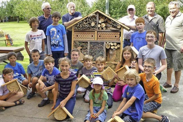 Ein Haus für Bienen und Co.