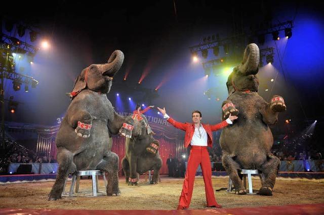 Zirkus Charles Knie in Freiburg