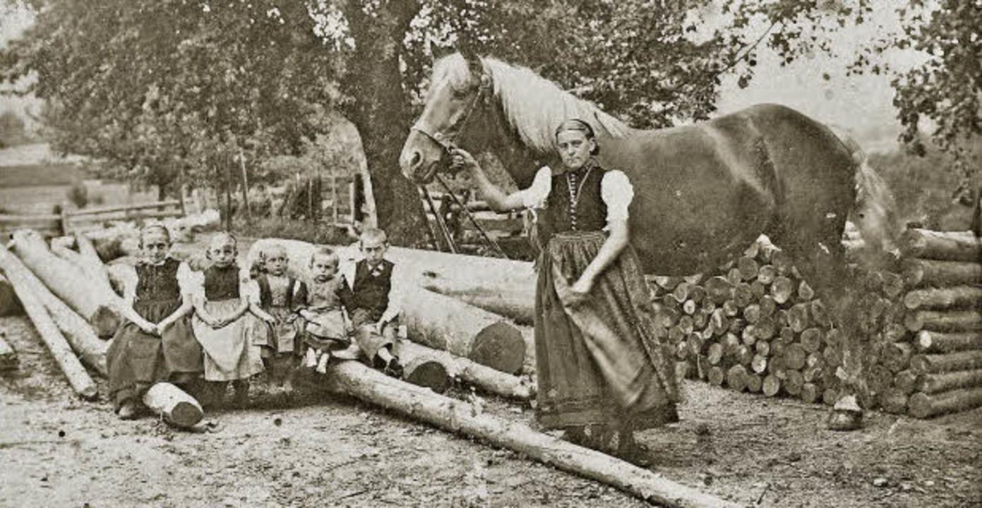 Holzrücken: Schon früher ging nichts ohne Pferdestärken.  | Foto: BZ