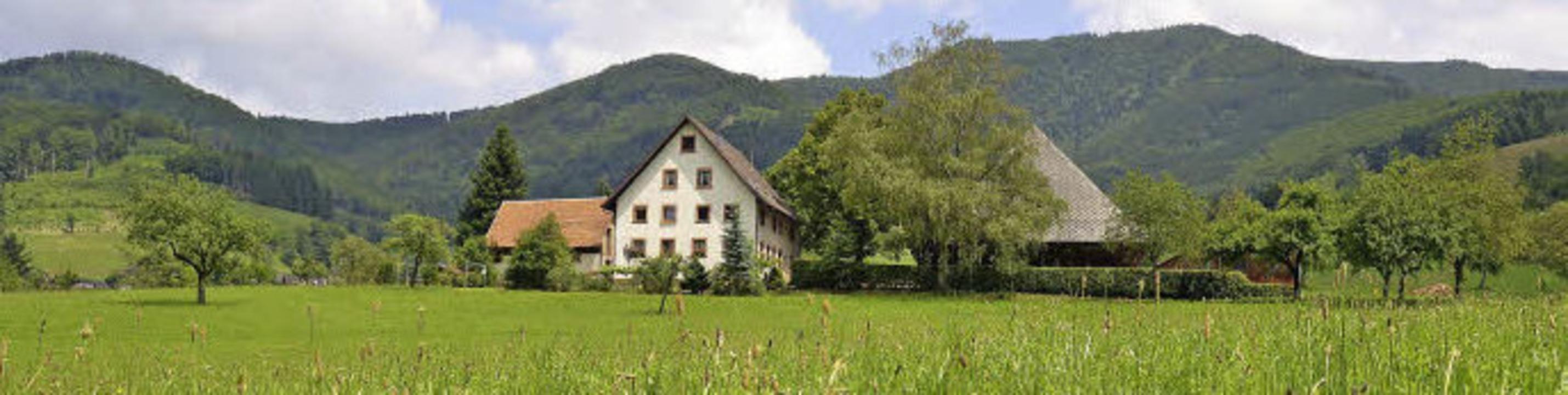 Schwarzwaldidyll im Oberglottertal: der Hofbauernhof   | Foto: Michael Bamberger/Birgit Herrmann/privat (2)