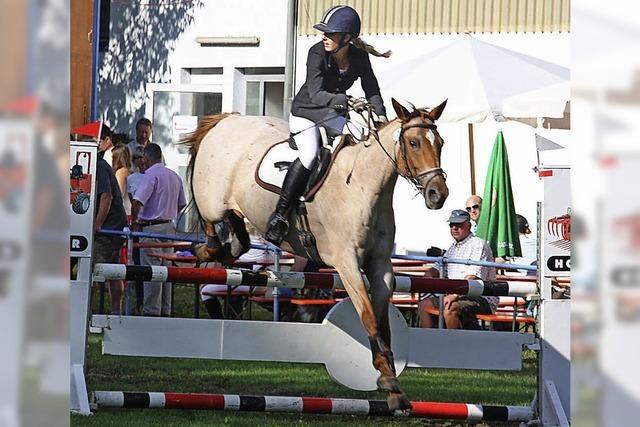 Vielseitiger Pferdesport
