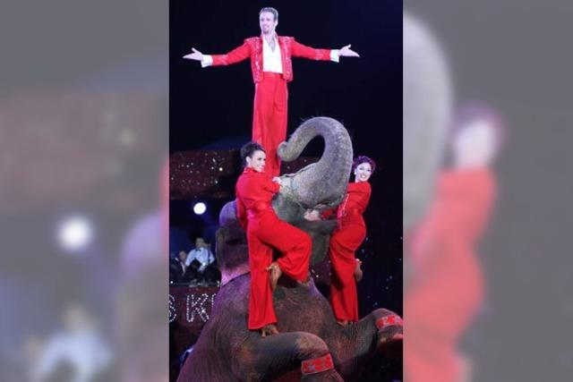 Clowns und Elefantenballett