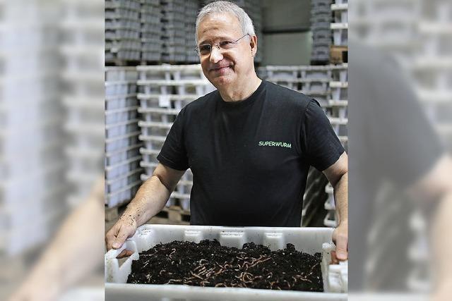 Martin Langhoff züchtet dicke, agile Regenwürmer