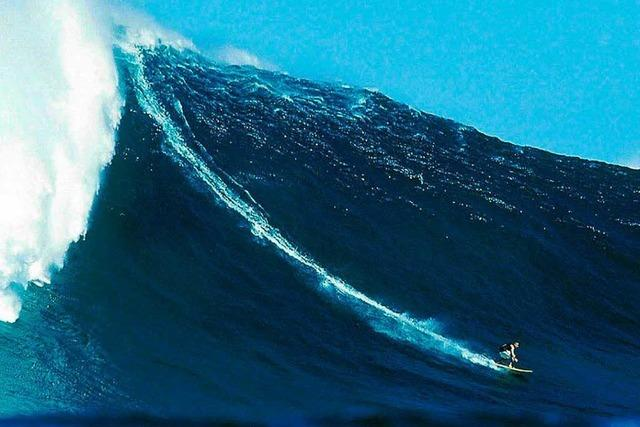Deutsches Hai-Opfer auf Hawaii gestorben
