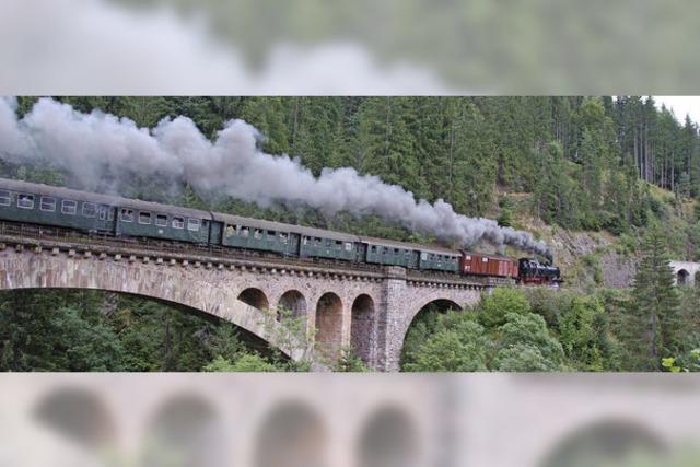 Dampflokomotiven auf der Dreiseenbahn