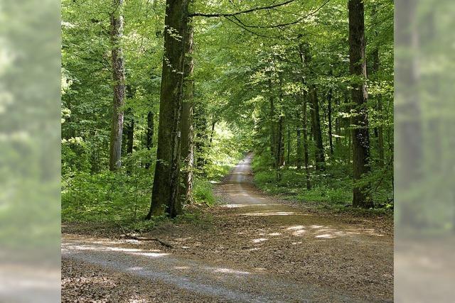 Landschaftsgenuss und Naturschutz